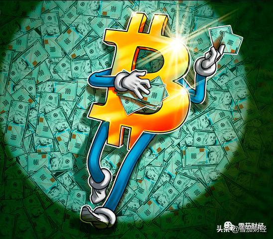 加拿大图形软件公司决定用比特币替代现金纳为其储备资产插图2