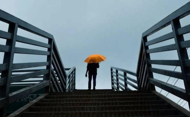 邹传伟:从传统金融解析 DeFi 保险现状和发展前景
