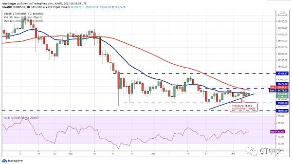分析:山寨币价格正在走高 下跌趋势可能即将结束