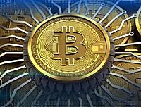 币圈小蝶:币圈区块链投资法则