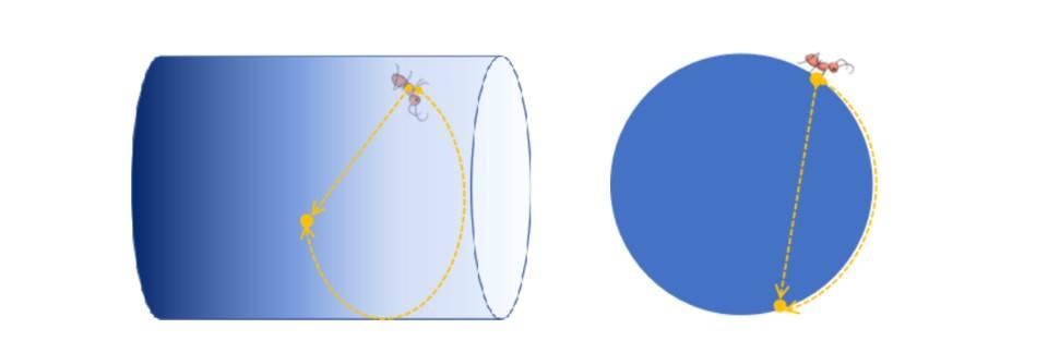 从物理学视角理解 Loot:为什么它可能是元宇宙的「虫洞」?